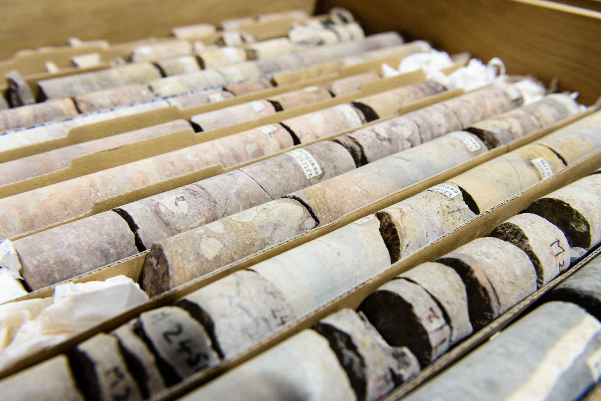 Rock core samples at the Geological Survey of Northern Ireland
